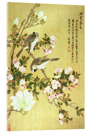 Acrylic print  Crab apple, magnolia and baitou birds - Ma Yuanyu