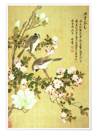 Premium poster Crab apple, magnolia and baitou birds