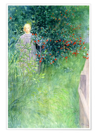 Premium poster  In the Hawthorn Hedge - Carl Larsson