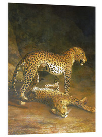Foam board print  Two Leopards lying in the Exeter Exchange - Jacques Laurent Agasse