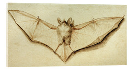 Acrylic print  Bat with spread wings - Hans Holbein d.J.