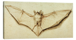 Canvas  Bat with spread wings - Hans Holbein d.J.