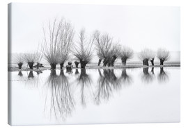 Canvas print  Willow trees in the mirror image of the flood - Ingo Gerlach