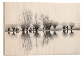 Wood print  Willow trees in the mirror image of the flood - Ingo Gerlach