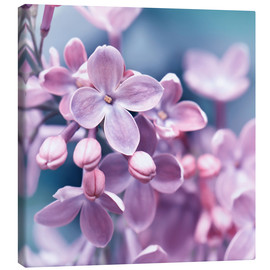 Canvas print  Purple - Atteloi