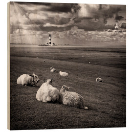 Wood print  Talking Sheep - Carsten Meyerdierks