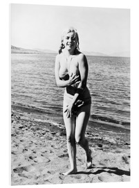 Foam board print  Marilyn Monroe