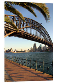 Acrylic print  Sydney Harbor Bridge - David Wall