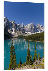 Aluminium print  Moraine Lake in the mountain valley - Paul Thompson