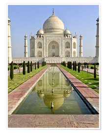 Steve Roxbury - The Taj Mahal