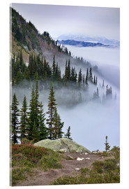 Acrylic print  Mount Whistler between clouds - MFR