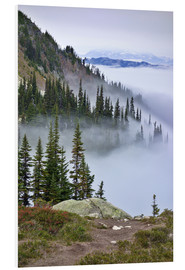 Foam board print  Mount Whistler between clouds - MFR