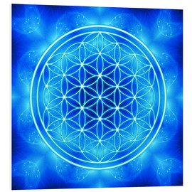 Forex  Flower of Life - Archangel Michael - Dolphins DreamDesign