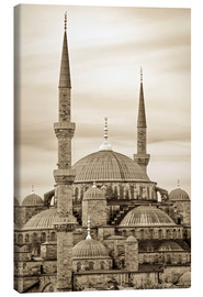 Canvas  the blue mosque in sepia (Istanbul - Turkey) - gn fotografie