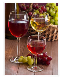 Poster  Wine in glasses - Edith Albuschat