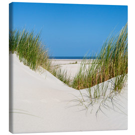Canvas print  the coastline of the german sea on the island Norderney (Germany) - gn fotografie