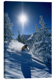 Canvas print  Skier in sunshine - James Kay