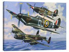 Canvas  Spitfires - Wilf Hardy