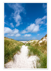 Premium poster  Path to the beach - Reiner Würz