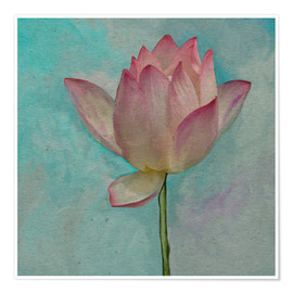 Premium poster Pink Lotus on Turquoise Blue
