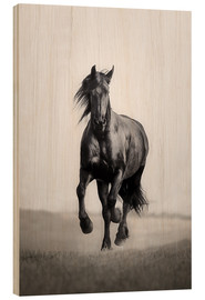 Wood print  Horse Friesian in the steppe - Monika Leirich