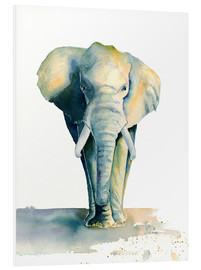 Foam board print  Elephant - Jitka Krause
