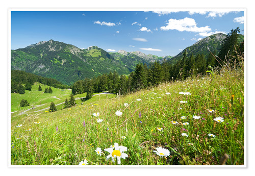 Premium poster alpine meadow germany