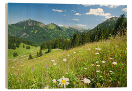 Wood print  alpine meadow germany - bildpics