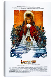 Canvas print  Labyrinth