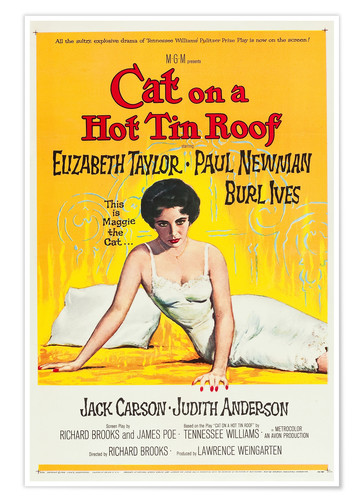 Premium poster Cat on a Hot Tin Roof