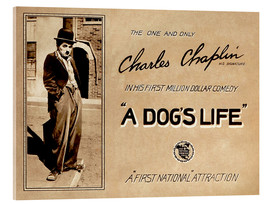 Acrylic glass  A Dogs Life, Charlie Chaplin poster Photo 1918