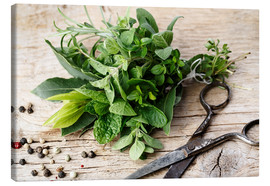 Canvas print  Kitchen Herbs 11 - Nailia Schwarz