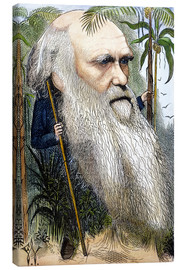 Canvas print  Charles Robert Darwin - Frederick Waddy