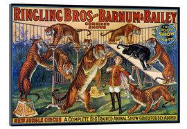 Acrylic print  Circus poster from 1920