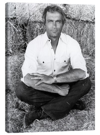 Canvas  Terence Hill
