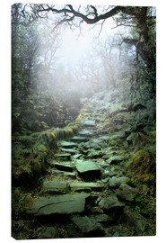 Canvas  mystical stairs - Nadine Conrad