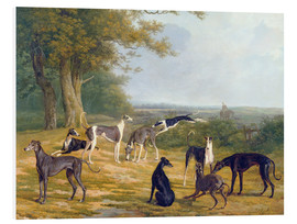 Foam board print  Nine Greyhounds on a landscape - Jacques Laurent Agasse