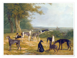 Premium poster Nine Greyhounds on a landscape