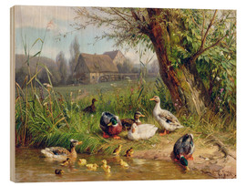 Wood print  Mallard Ducks with their Ducklings - Carl Jutz