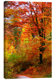 Canvas  Autumn - Falko Follert
