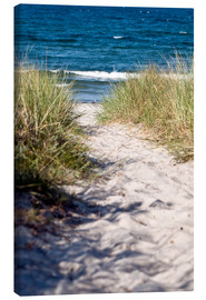 Canvas print  White dune on the beach of the island of Rügen - CAPTAIN SILVA