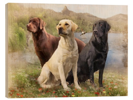 Wood print  Labrador Retrievers - Selina Morgan