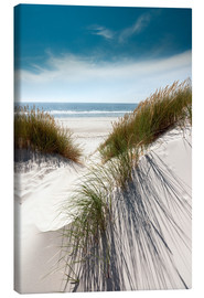 Canvas print  Dunes with fine beach grass - Reiner Würz