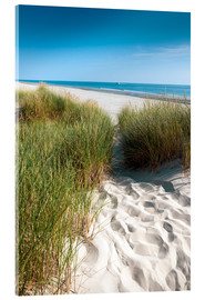 Acrylic print  Dunes on the beach - Reiner Würz