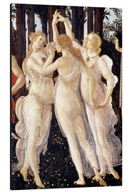 Aluminium print  The Three Graces - Sandro Botticelli