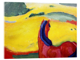 Acrylic print  Horse in the countryside - Franz Marc
