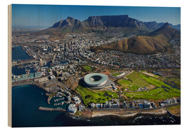 Wood  Aerial view of Cape Town Stadium - David Wall