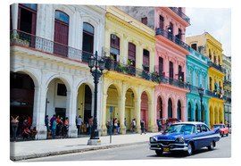 Canvas print  Pastel buildings in Havana, Cuba - Bill Bachmann