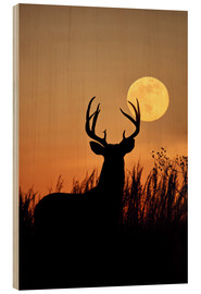 Wood  White-tailed Deer, buck with full moon - Larry Ditto