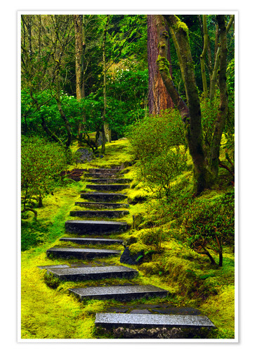 Premium poster Stairs in the Japanese garden